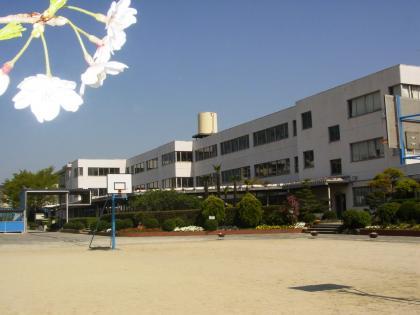 台 小学校 藤山